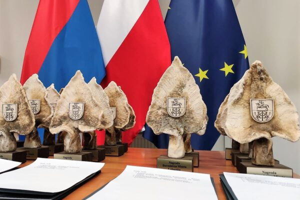 Miniaturka artykułu Rusza nabór do kolejnej edycji Nagród Burmistrza Miasta Lubartów